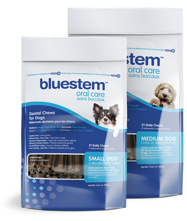 bluestem dental chews