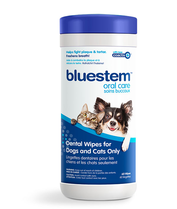 bluestem dental wipes