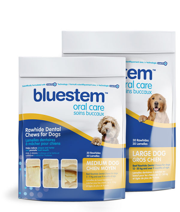 bluestem™ Dental Chews