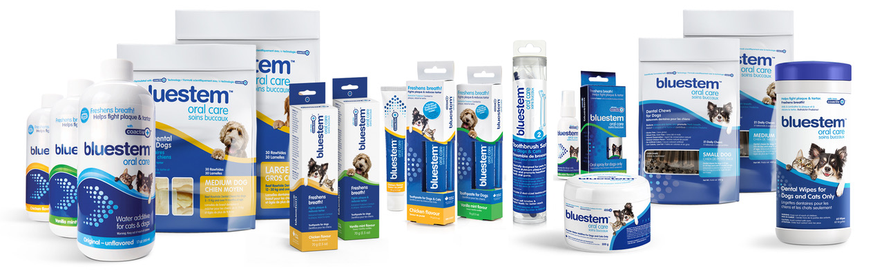 bluestem's full range of products with coactiv+